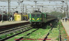 Mathura Welcomes  Green Train on Green Carpet (Amit C Patel) Tags: yuva mathura greatphotographers wag9