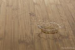 Splash! (Natasha Haq) Tags: wood water drop splash splashing