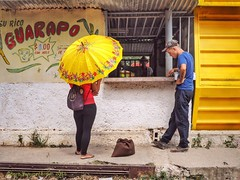 Yellow Parasol, Hershey, Cuba (augenbrauns) Tags: yellow cuba olympus parasol hersheycuba