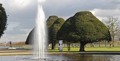 Ancient Yew Trees (Ellsasha) Tags: blue trees england sky lake color colour tree green london fountain colors gardens clouds garden landscape pond colours hamptoncourt jardinier simplysuperb