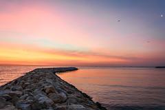 Through the sea... (Francizc Chachula) Tags: sea orange sun moon black nature birds sunrise nikon natural stones vessel romania nikkor constanta 18105mm d7200