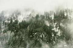"2009-026-028g293-ZC ""December '09"" (andrea.sosio) Tags: winter italy snow cold nikon mostinteresting nik valledaosta nikkor70300 d80 analogefex 20092610"