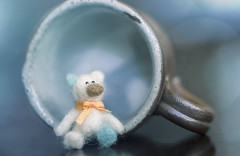 peanut and the teacup (rockinmonique) Tags: blue cute cup canon toy miniature teddy bokeh tiny teddybear tamron moniquew