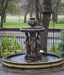 366-123 - fountain (Ruth_W) Tags: wedding liverpool 365 seftonpark joannjase