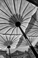 Solar protection ?  / Zonwering ? (jo.misere) Tags: bw court plein parasols zw bilzen aldenbiesen zonwering commanderij