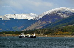 MV Fame (Zak355) Tags: scotland riverclyde boat ship scottish vessel cargo fishfarm bute rothesay isleofbute mvfame
