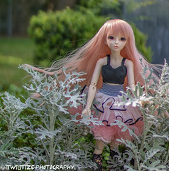 The old files (twilitize) Tags: camera cute art beautiful beauty cemetery canon fun cool doll dolls florida awesome adorable cutie adventure fantasy bjd dolly darling fairyland daring dollphotography canonphotography minifee floridaphotography bjdphotography