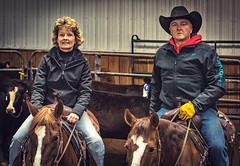 IMGP2990 (Webbed Foot Photo) Tags: horses horse pennsylvania sorting cowhorse webbedfootphotography pentaxk3 opengateranch darrenolsen dtolsen webbedfootphoto sutliffperformancehorses3272016clinic opengateranch2mansorting512016