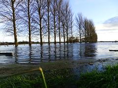 RIVER BANN AT PORTADOWN BURST  ITS BANKS (Monkiiiey Henry Clark) Tags: its river bann burst banks portadown at