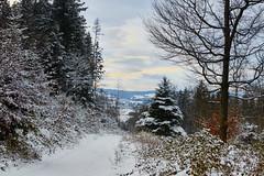 Hiver (Meinrad Prisset) Tags: nature schweiz switzerland nikon suisse hiver neige nikkor paysage fort d800 nikonlens swizzera cantondefribourg districtdelaglne nikond800 vuarmarens afsnikkor70200f4vr captureone9