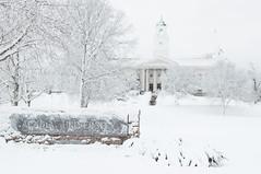 DSC_8303 (Grant is a Grant) Tags: ca winter snow canada campus novascotia ns snowstorm january kitlens wolfville 1855 acadia acadiauniversity acadiau nikkor1855mm nikond90 vsco vscofilm