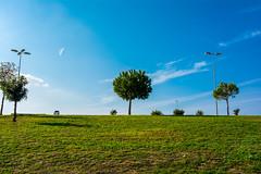 DSC_6011-5.jpg (bethaql) Tags: park parque navidad ciudad navidades torrox jerez 2015 soleado jerezdelafrontera manuelguerrero lagunadetorrox afueradejerez manuelguerrerojerez