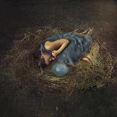 Origin (Andrea Chapman) Tags: bird nest egg beginning origin inception