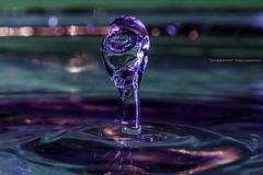 Cobra (UH82NVMy Photography) Tags: macro water photography control drop pop ring drip bubble droplet crown splash promote promotecontrol uh82nvmyphotography uh82nvme