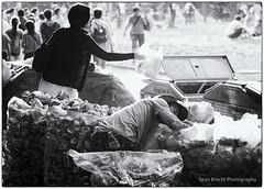 Cyclical copy (Sean Brecht) Tags: japan tokyo garbage recycling yoyogipark yoyogikoen peopleinthepark