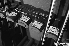 Periphery at The Opera House (RileyTaylorPhoto.com) Tags: show music toronto canada metal concert live omega band alpha operahouse concertphotography juggernaut progressive distort periphery bandphotography sumerian musicphotography thistimeitspersonal markholcomb matthalpern mishamansoor spencersotelo adamgetgood juggernautalpha juggernautomega