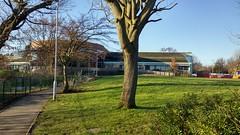Tudor Grange Park - Tudor Grange Leisure Centre (ell brown) Tags: greatbritain trees england lake tree mobile coach pond birmingham unitedkingdom path lg mobileshots westmidlands coaches solihull tudorgrangepark tudorgrangeleisurecentre hollywoodholidays lgg3
