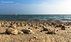Rock (N@r@y@n@) Tags: india beach tamilnadu rameswaram southindia iphone iphone6s