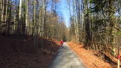 endlich wieder auf Achse (twinni) Tags: salzburg bike austria sterreich felt babsi biketour wallersee qx100 flachgau mw1504 30012016