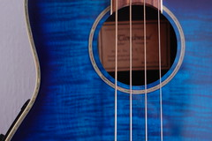 Tanglewood Bass (basswulf) Tags: blue lenstagged bass strings 32 tanglewood electroacoustic 50mmf18e d40 flamemaple 3008x2000 camerasetting:aperture=f4 permissions:licence=c image:ratio=32 201602 20160210