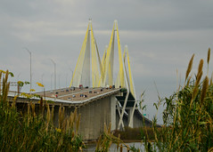 Fred Hartman Bridge, view from La Porte (autrevie) Tags: fredhartmanbridge cablestayedbridge baytowntx houstonshipchannel laportetexas baytownbridge harriscountytexas