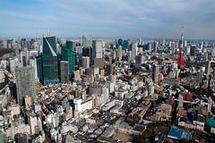 Tokyo Tower and Rippongi, Mori Tower City View, Tokyo, Japan (rmk2112rmk) Tags: city japan tokyo cityscape tokyotower moritower cityview rippongi skytree moritowercityview tokyotowerandrippongi