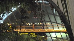 Closing Time (roger reyes) Tags: travel trees garden lowlight tourist greenhouse touristattraction touristspot