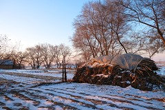 sunrise - hay (stevie0020) Tags: china travel light sun snow cold ice nature island north stack east hay rime 2016 stevie0020 hantuncun