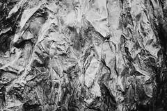 (koeb) Tags: bw detail texture skulptur sw mainz garten bären botanischer