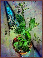 Sun Beam 14:25 (flynryon) Tags: art texture mike mobile digital portraits landscapes flickr artist canvas glaze adobe kansas shape figures impressionist fingerpaint ryon iphone artstudio scumble mashablecom fingerpaintedit flynryon iamda ipainter beesparkt paintbookca beesflite beesparkt:week=64