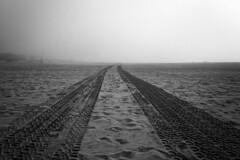 untitled . (helmet13) Tags: d800e raw bw california sealbeach beach skidmarks sand silence dimly morning fog silhouettes usa aoi heartaward peaceaward simplicity