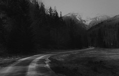 Black Road (stephanie_ruebenach) Tags: road bw white mountain black berg canon landscape austria sad strasse grain fate landschaft korn trist attersee schicksal schwarzweis weissenbachtal