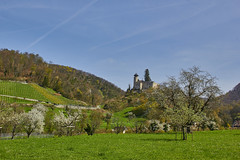 Der Frühling kommt nach Basel (Basel101) Tags: panorama schweiz basel landschaft ermitage burg festung erholung baselland dreamstime fotolia nordwestschweiz biseck
