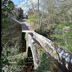 Edale Village Bridge and Cottages (daviddaniels989) Tags: bridge tree path derbyshire edale cottages