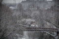 The Valley (A Great Capture) Tags: city bridge trees winter urban snow toronto ontario canada cold reflection tree water river lights downtown photographer bridges son canadian valley on agc 2016 jamesmitchell adjm lhiver wwwagreatcapturecom agreatcapture mobilejay