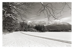 Winter Landscape Grimming Hinterberg Fuji X-Pro1 mono (c) 2016   :: ru-moto images 0482 (:: ru-moto images | pure passion...) Tags: pictures schnee winter blackandwhite bw mountain snow alps art tourism nature monochrome sepia print poster landscape photography mono austria countryside europe gallery fuji foto calendar outdoor quality urlaub fineart natur large images galerie collection alpine fotos posters stunning prints fujifilm alpen nikkor bild kalender landschaft printed bilder vacanze tourismus steiermark autriche styria fotogrfico salzkammergut erholung  14mm lealpi  grimming  hinterberg badmitterndorf schwarzweis supershot kunstdruck lesalpes manuell xpro1 thisphotorocks  lichtbildwerk  rumoto fxadapter