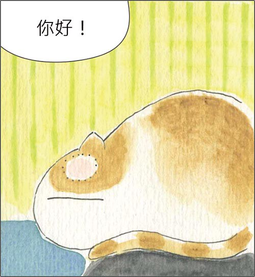 家裡來了一隻貓 你好喜歡的東西都很貴