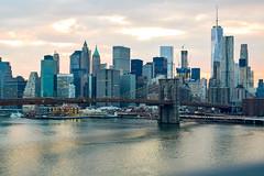 DSC_0165 (IntExp7) Tags: nyc newyorkcity ny newyork skyline downtown manhattan brooklynbridge manhattanbridge eastriver manhattanskyline lowermanhattan downtownmanhattan 1wtc downtownmanhattanskyline oneworldtradecenter oneworldtrade