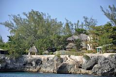 DSC_4407 (shutterbugss) Tags: cliff nikon jamaica negril cliffdiving rickscafe nikond90