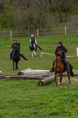 DSCF0335.jpg (Ed Traywick) Tags: horses horse leo robyn obstacles horseclinic