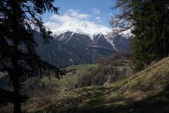 Engiadina Bassa (Toni_V) Tags: alps landscape schweiz switzerland spring europe suisse hiking rangefinder trail mp alpen svizzera engadin frhling wanderung wanderweg randonne 2016 graubnden grisons svizra escursione summiluxm leicam unterengadin grischun engiadinabassa 35lux messsucher 160430 35mmf14asphfle typ240 toniv m2404487 scuolftanguardalavin