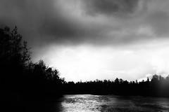 Something else (kceuppens) Tags: blackandwhite bw nature landscape outdoors nikon moody belgium belgie outdoor natuur antwerp nikkor polder antwerpen hoboken buiten landschap zw 1635 doomy d700 bospolder nikond700 nikkor1635f4vr