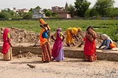 The Road to Agra 1 (Holofoto) Tags: india asia vei portretter mennesker teknikk veiarbeidere indere portretterfraindia trafikkveibroer