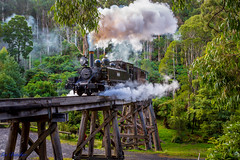 The Puffing Billy Railway, Melbourne Australia (les.butcher) Tags: trestle bridge heritage creek railway australia melbourne dandenong ranges billy locomotive gauge narrow belgrave the puffing 14a monbulk