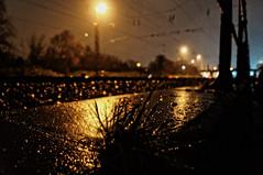 ([gegendasgrau]) Tags: railroad light sky nature wet grass rain weather night lights licht rainyday nightshot nacht pov natur tracks himmel atmosphere eisenbahn railway nightlight rails raindrops gras nightsky nightlife gleise regen wetter lichter ambiance trackside nass nachthimmel atmo