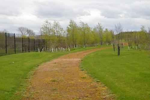 Gallions Reach Park