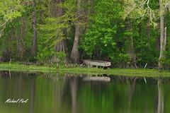 Old boat IMG_7269c (durkeyman05) Tags: old water boat pond woods waterfront rustic oldtime easternnorthcarolina