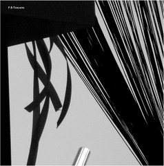 Signos. Signs. (Esetoscano) Tags: bw signs abstract byn lines geometry curves bn abstracto signos lineas curvas geometra divergencia