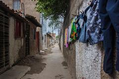 10-SAN_7787 (Revelando o Coque) Tags: recife fotografia crianas pernambuco coque religiosidade senhoras comunidadedocoque