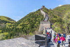 The Great Wall (michael_rizzi) Tags: world china travel building green heritage wall architecture forest asian colorful great chinese beijing culture juyongguan